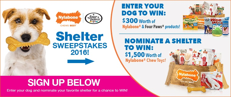 Nylabone & Four Paws Shelter Sweepstakes 2016